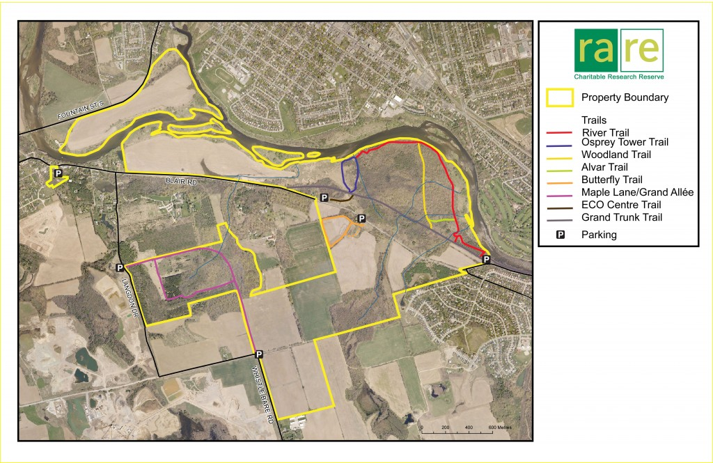 2014 property trails. rare Charitable Research Reserve logo. Property Boundary, Trails, River Trail, Osprey Tower Trail, Woodland Trail, Alvar Trail. Butterfly Trail, Maple Lane/Grand Allee, ECO Centre Trail, Grand Trunk Trail, Parking