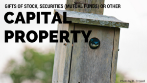 Gifts of stock, securities (mutual funds) or other capital property, bird in bird house