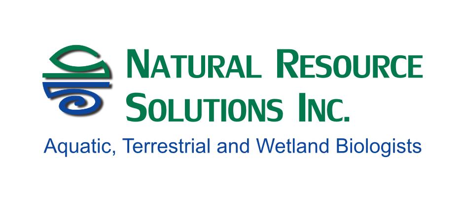 NRSI Logo